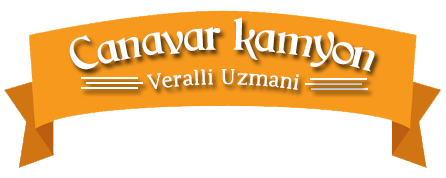 Canavar Kamyon Veralli Uzmani
